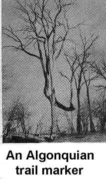 Algonquian-Trail-Marker