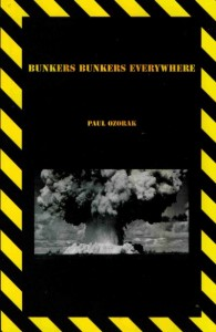 Book Cover of Bunkers Bunkers Everywhere