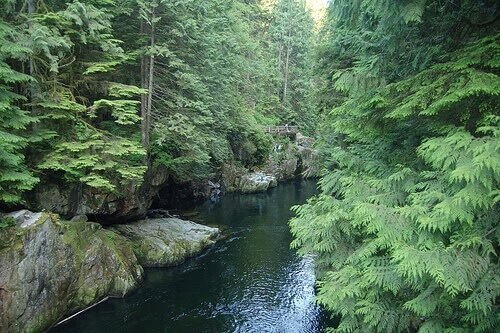 Picture showing the span of the Capilano River.