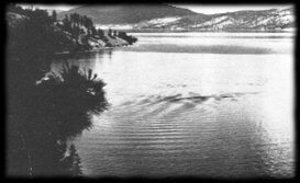Ogopogo picture in 1964 by Eric Parmenter