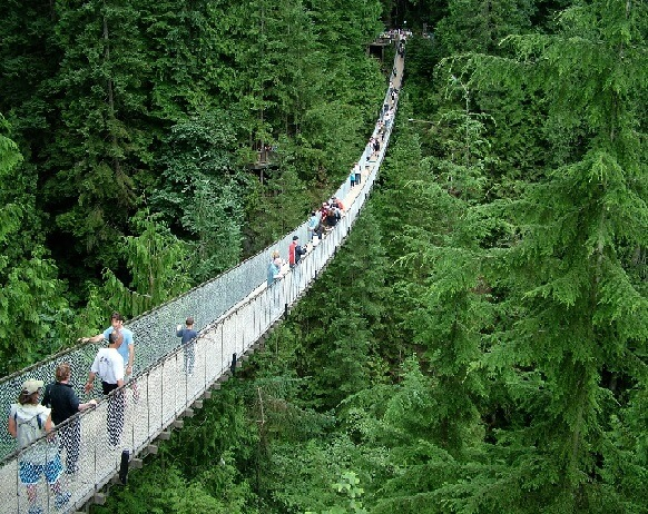 Image result for capilano suspension bridge