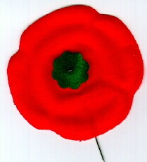 In Flanders Field - Canadian Poppy