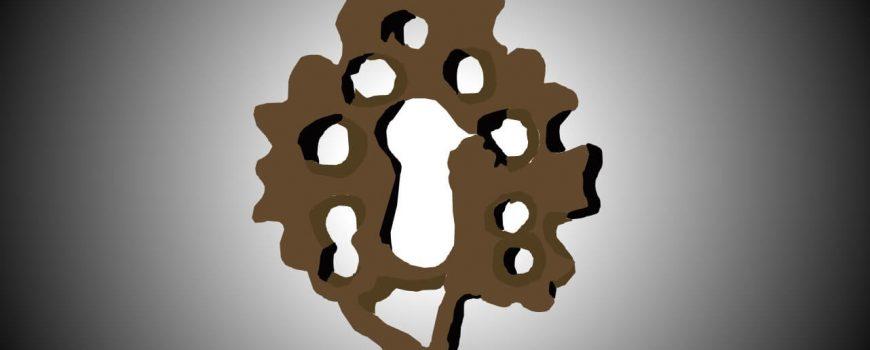 oak-island-keyhole