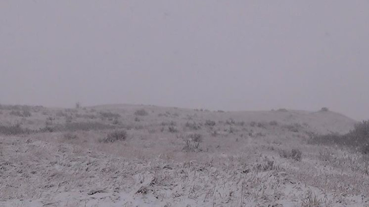 whiteout on the prairies